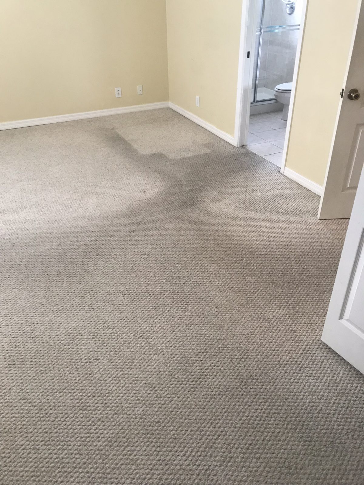 Professional Carpet Cleaning Clearwater Florida by Howards Cleaning Service