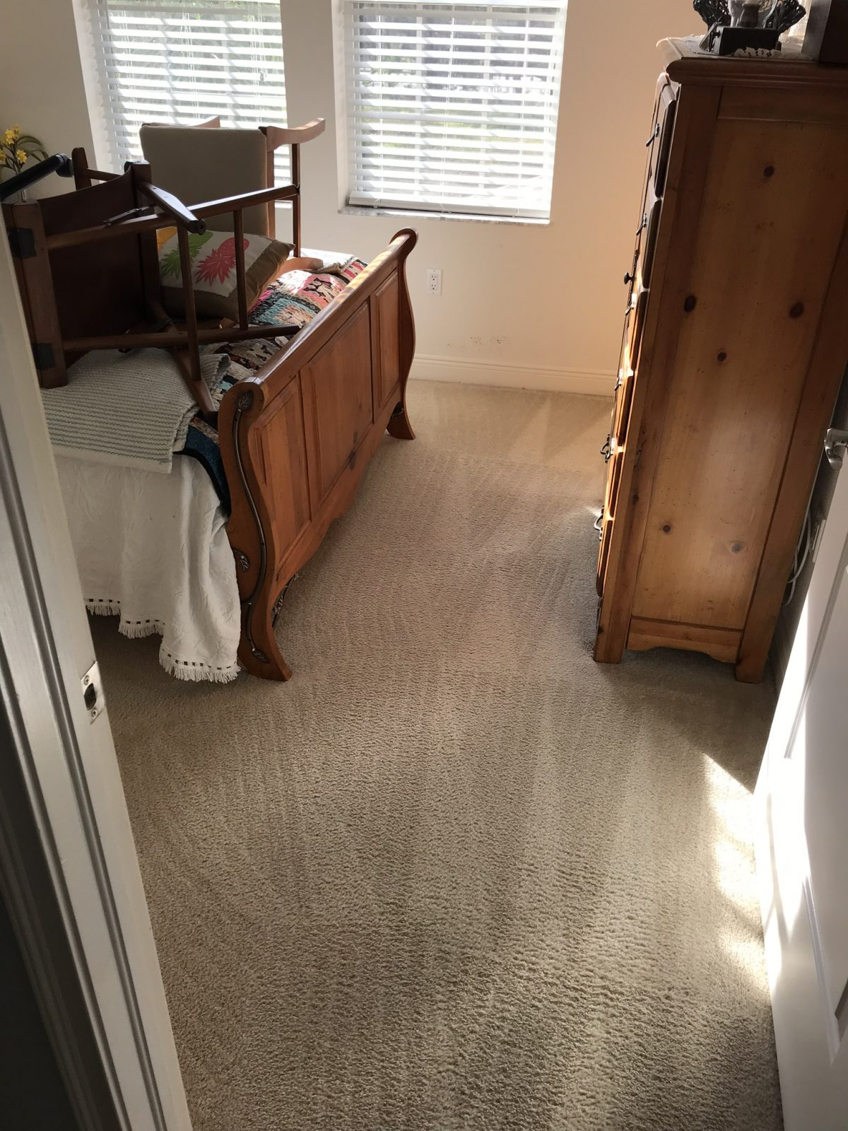 Professional Carpet Cleaning Dunedin Florida by Howards Cleaning Service