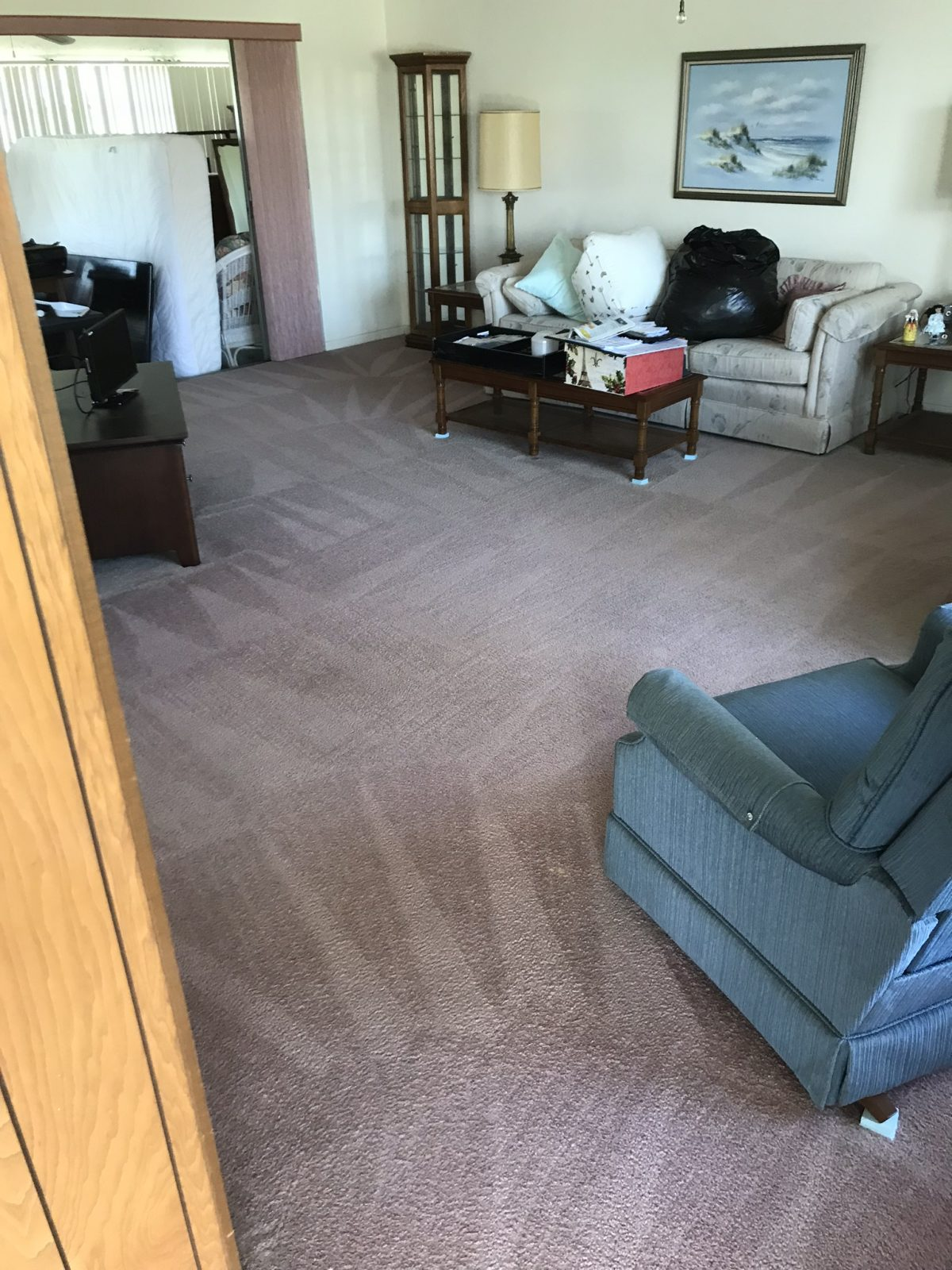 Professional Carpet Cleaning Holiday Florida by Howards Cleaning Service