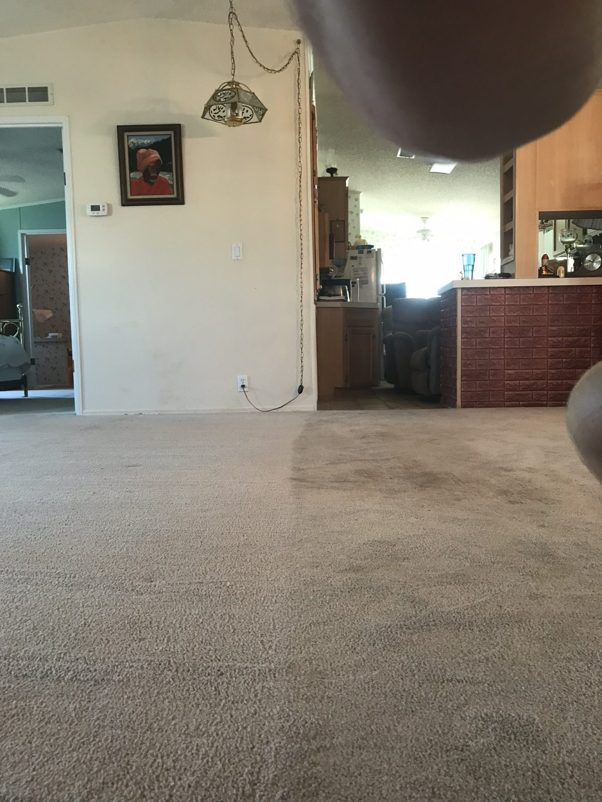 Professional Carpet Cleaning New Port Richey Florida by Howards Cleaning Service