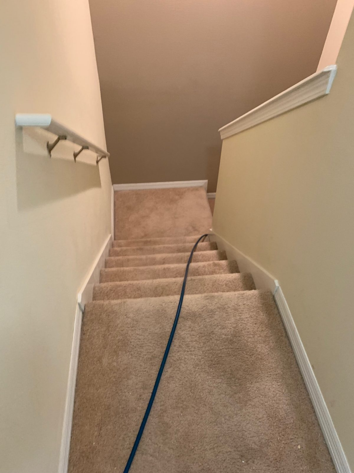 Professional Carpet Cleaning Odessa Florida by Howards Cleaning Service