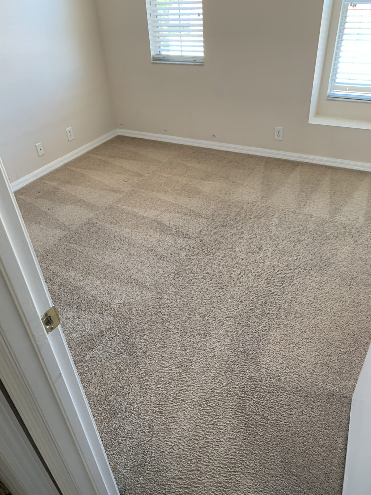 Professional Carpet Cleaning Oldsmar Florida by Howards Cleaning Service