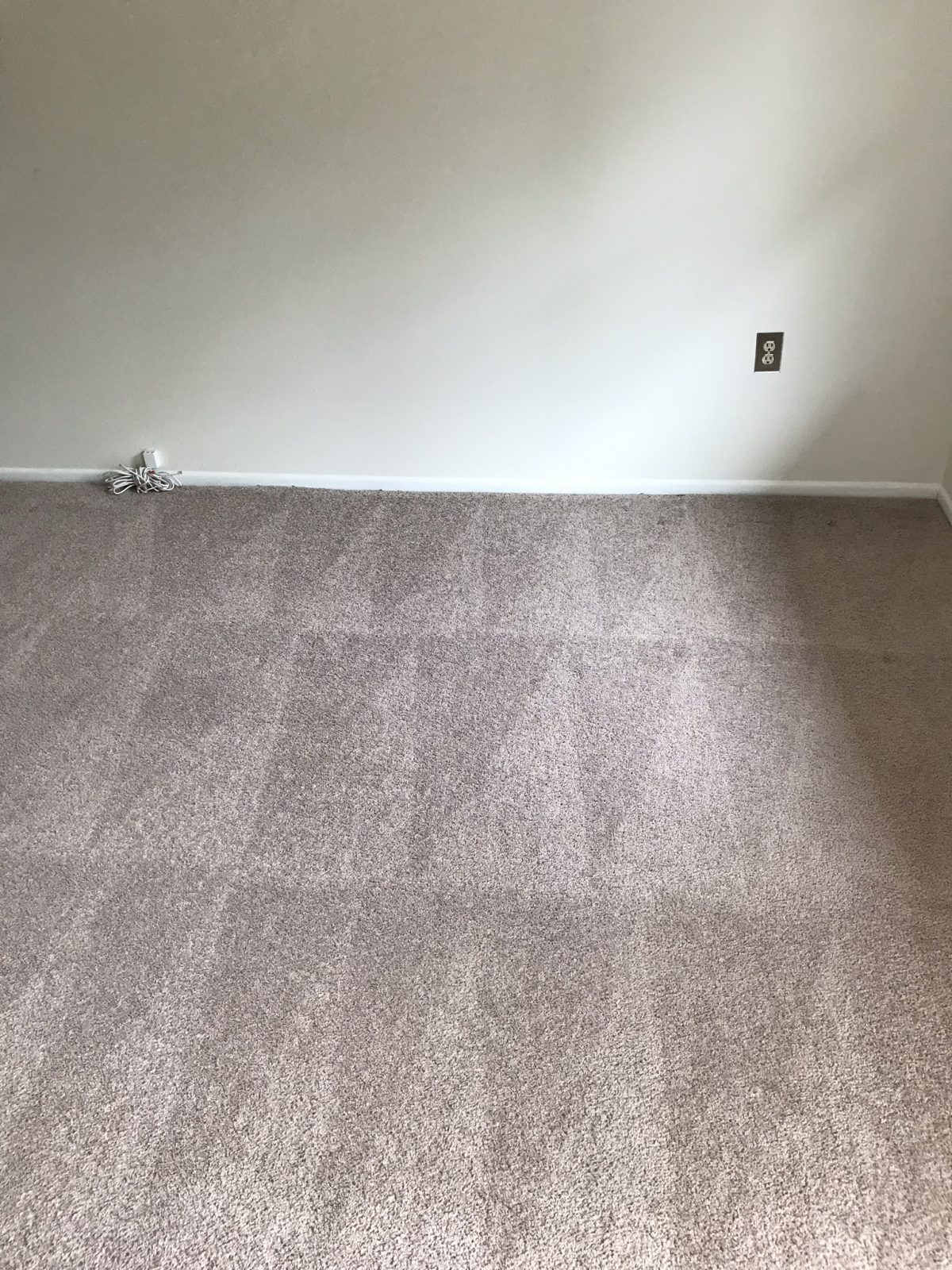 Professional Carpet Cleaning Palm Harbor Florida by Howards Cleaning Service