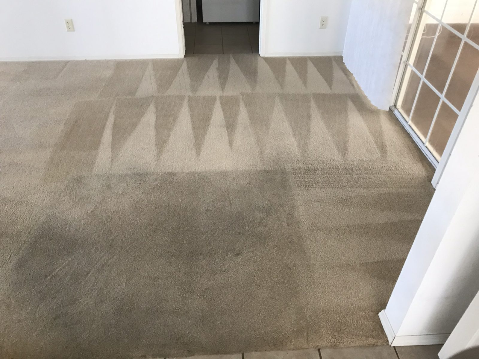 Professional Carpet Cleaning Tarpon Springs Florida by Howards Cleaning Service