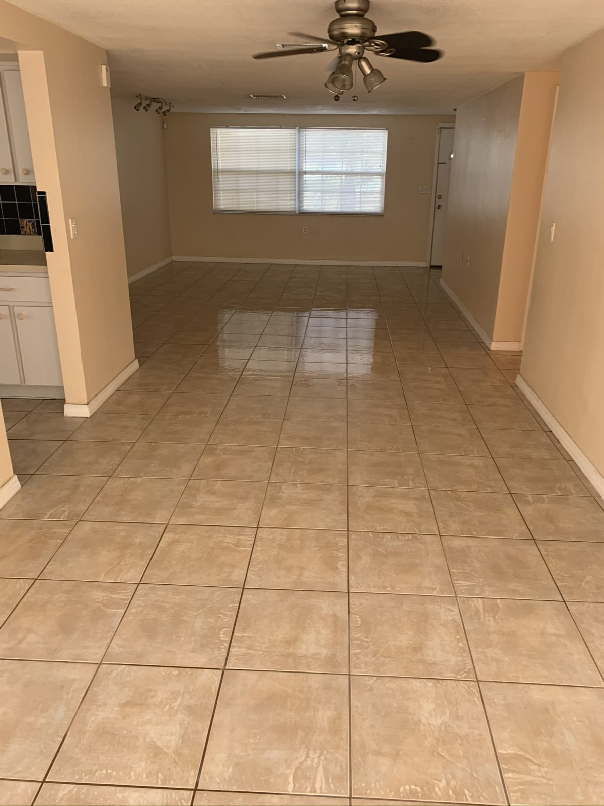 Professional Tile & Grout Cleaning Trinity Florida by Howards Cleaning Service