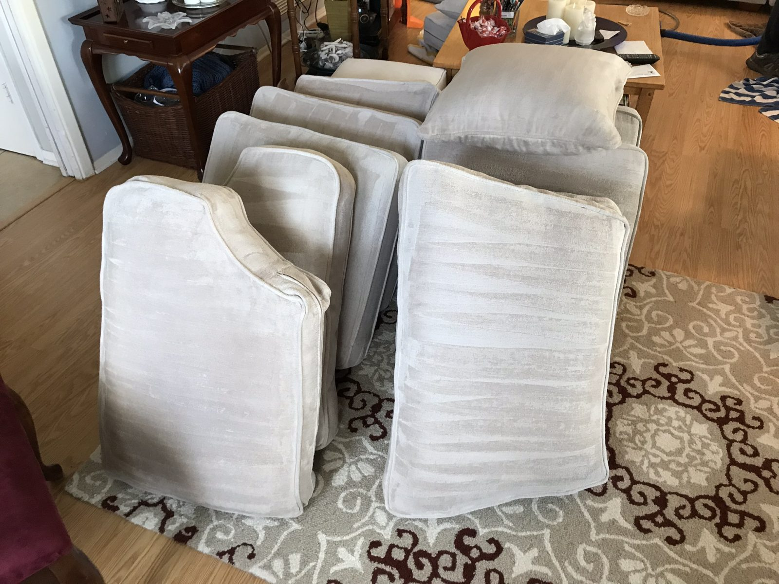Professional Upholstery Cleaning Oldsmar Florida by Howards Cleaning Service
