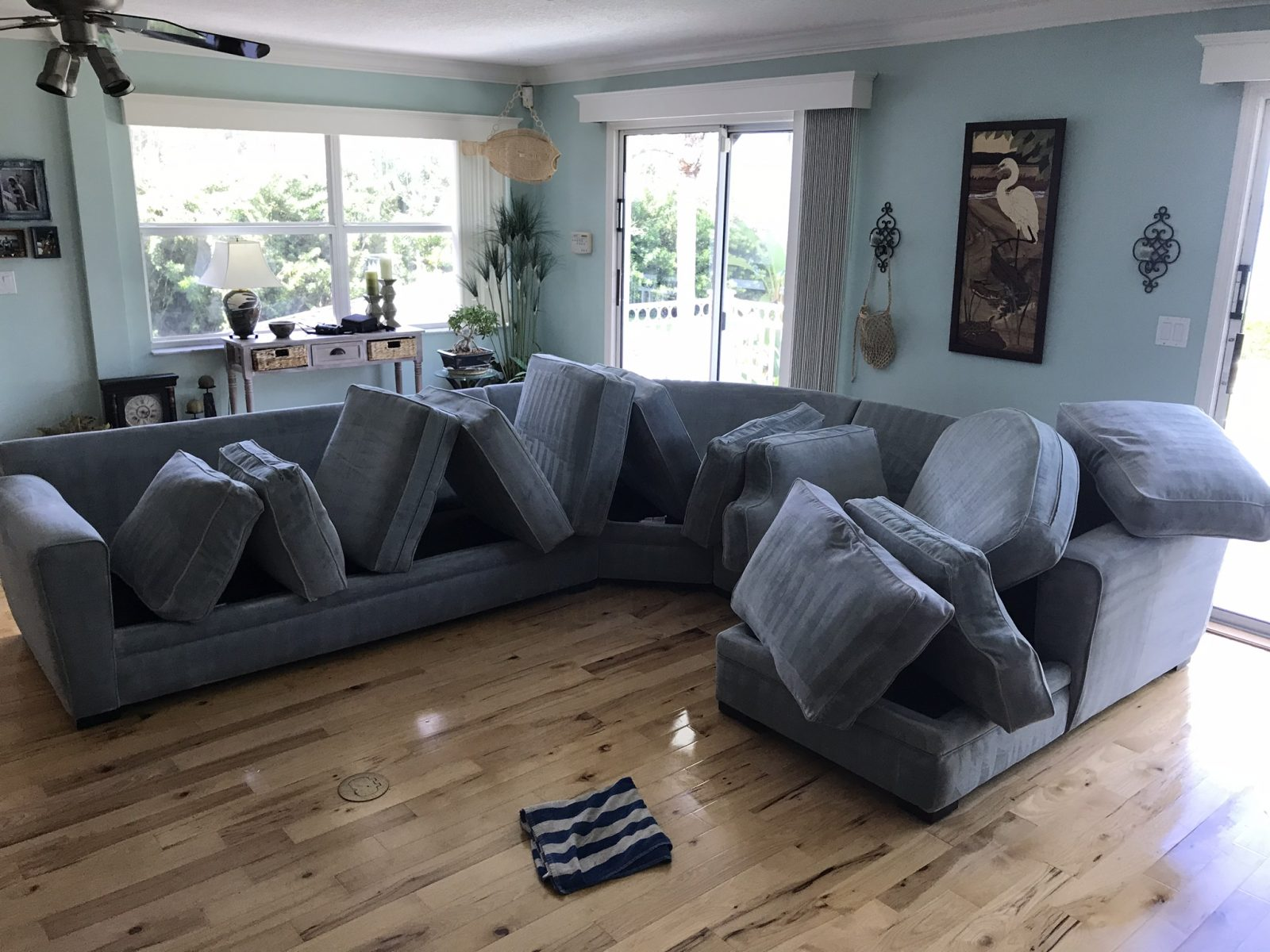 Professional Upholstery Cleaning Trinity Florida by Howards Cleaning Service